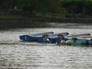 ボートイメージ