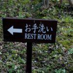 サンポールで実家のトイレを開通させた話。