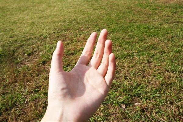 手のひらイメージ