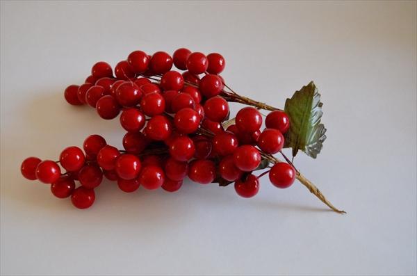 赤い実、クリスマスイメージ