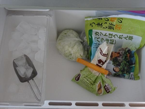 冷蔵庫の中身、公開、4人家族