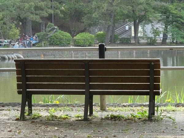 公園デート、ベンチ